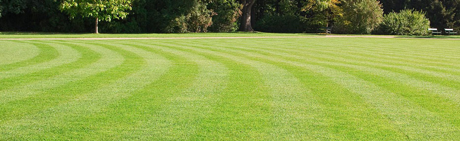lawn-fertilization-header