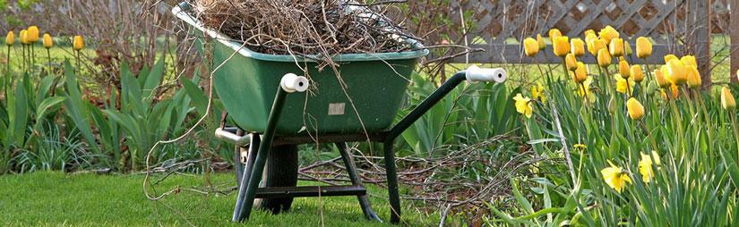 spring-cleanup-header